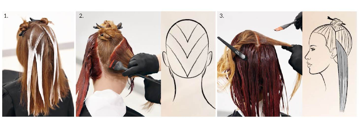 colour collage