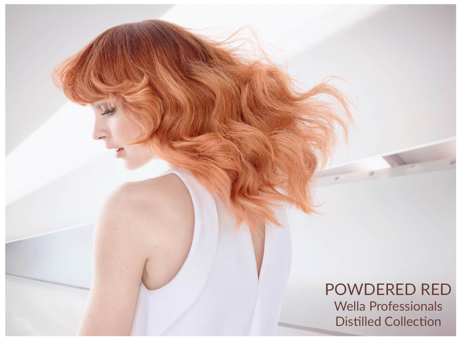 wella powdered red model
